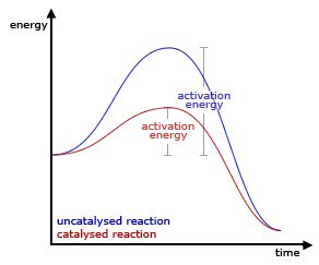 Evaluation rates of reaction coursework