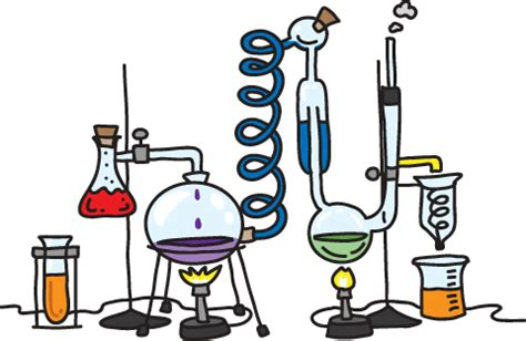 Rate of Reaction of HCl & Mg Lab Answers - SchoolWorkHelper